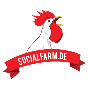 Suchmaschinenmarketing Berlin - Socialfarm